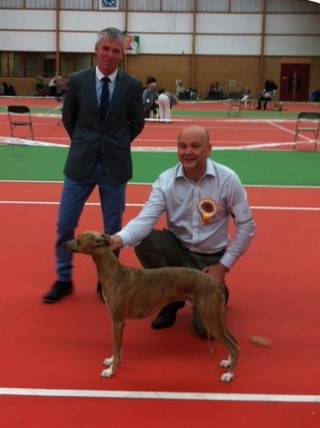 Preston Hound Grp Winner
