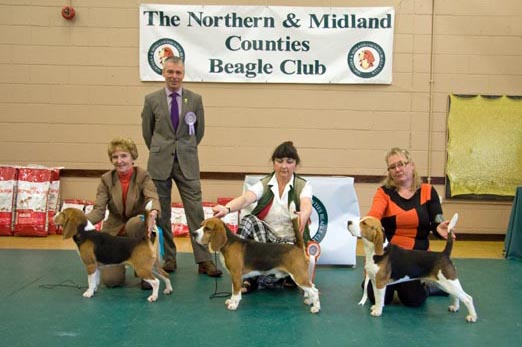 feb13 nmcbc judge dogs