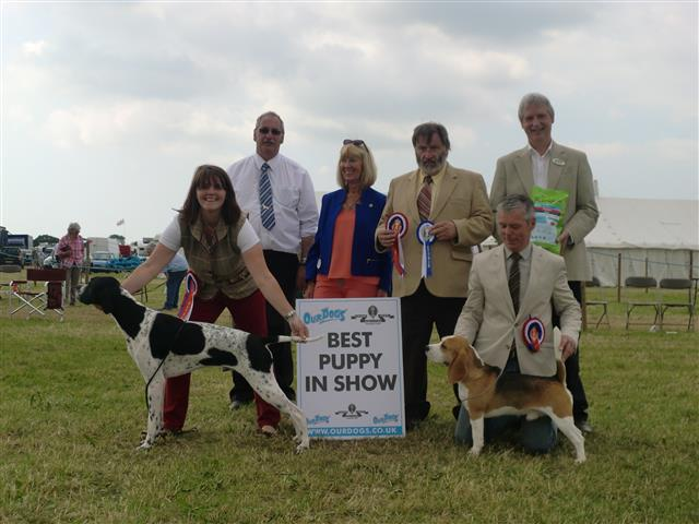 Cheshire County Show